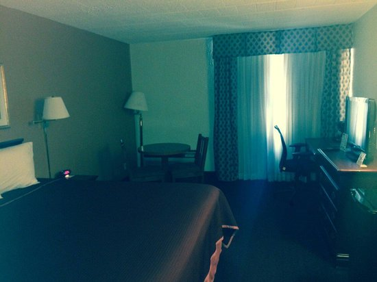 Howard Johnson Bartonsville/Poconos Area: Relaxing room really clean