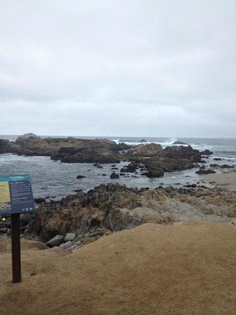 17-Mile Drive: Just past Lovers Point on our Scenic Drive