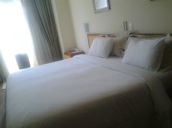 Mendes Plaza Hotel: Apto
