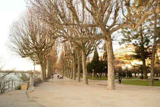 Ibis Coimbra : Parque do Mondego, em frente ao Hotel