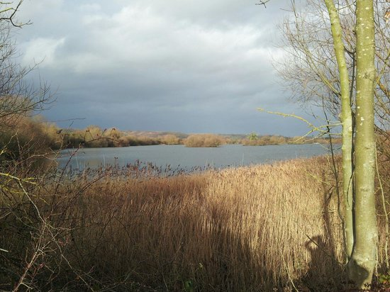 Branston Water Park: Looking from the bottom half of the lake.