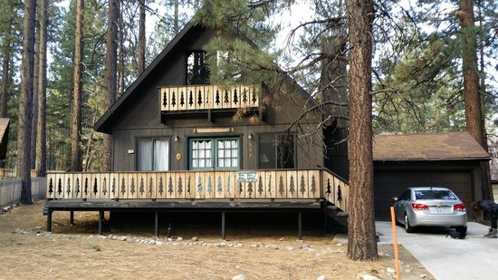 Sleepy Forest Cottages: Our cabin