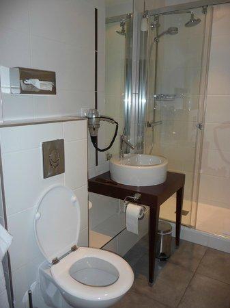 Kyriad Prestige Dijon Centre : Banheiro do quarto 312