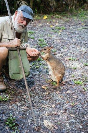 Australian Natural History Safari: David and one of the small kangaroos