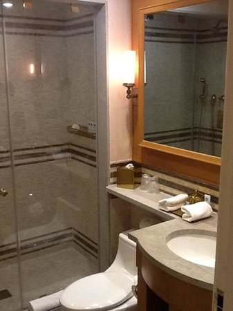 The St. Regis Washington, D.C. : smallish bath
