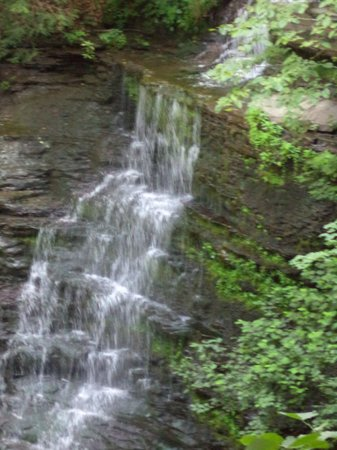 Pine Creek Gorge: Hike past the falls