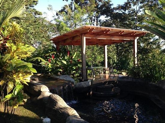 Hotel El Silencio del Campo: les bassins