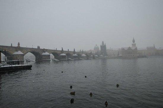 Kampa Garden: Карлов мост