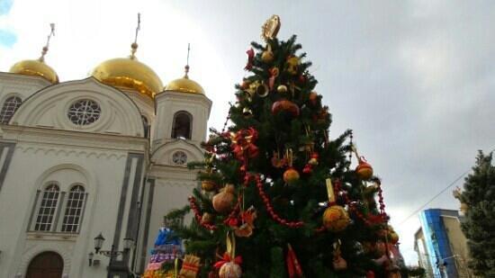 City Botanical Garden: Храм св.Ал.Невского недалеко от сада.