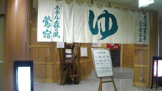 Hotel Mori no Kaze Ousyuku: 温泉