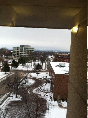 Radisson Hotel La Crosse: view