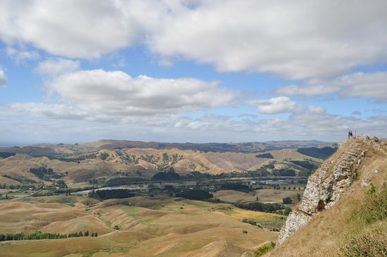 Te Mata Peak: high up