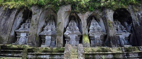 Sari Ubud Tours