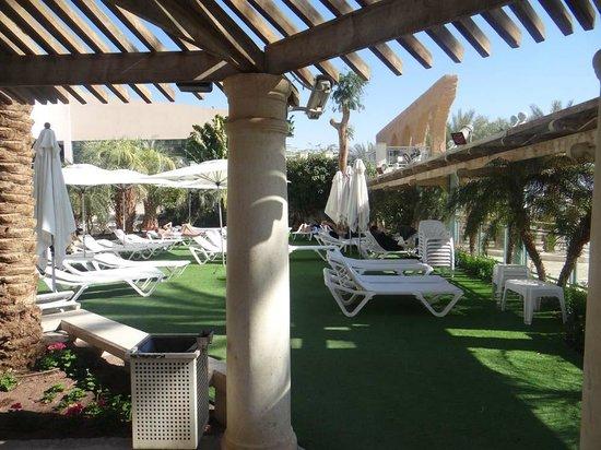 Herods Palace Hotel : Солярий