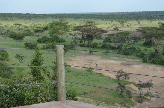 Eagle View, Mara Naboisho : View from Terrace