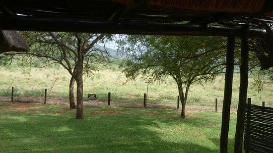 Bakubung Bush Lodge: Veranda