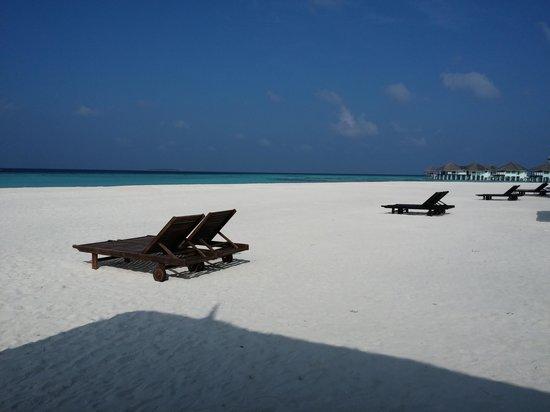 KIHAA Maldives Island Resort & Spa: beach