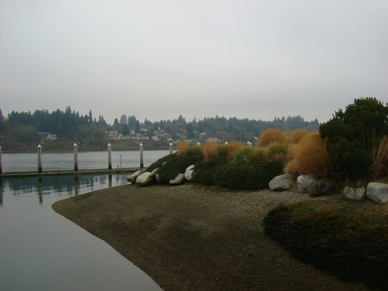 Percival Landing: Port of Olympia