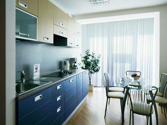 MIRIT Hotel : Апартаменты кухня