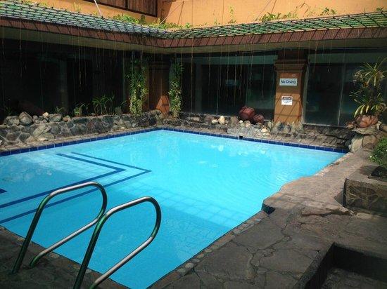 Bayview Park Hotel Manila: 小さいプール