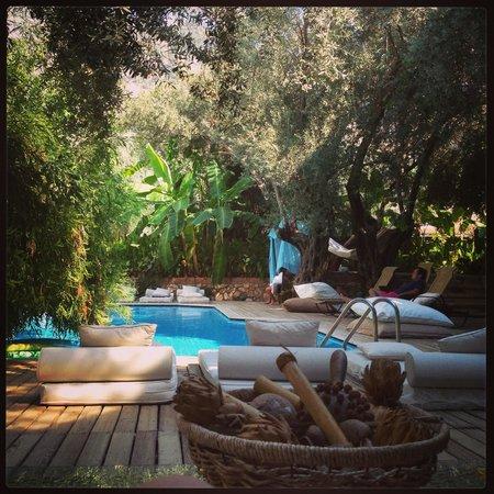 Jade Residence: Niceee