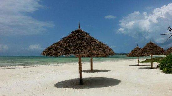 Pongwe Bay Resort: beach