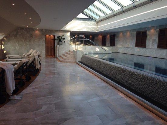 Four Seasons Hotel des Bergues Geneva: Pool area
