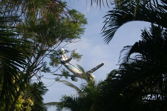 Samui Mermaid Resort : Самолеты на бунгало