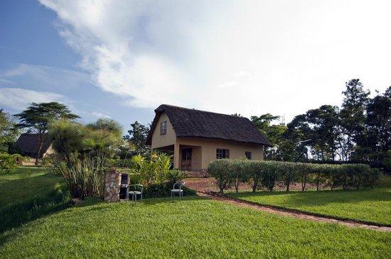 Holland Park : Cottage