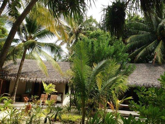 Maafushivaru: Villa et terrasse