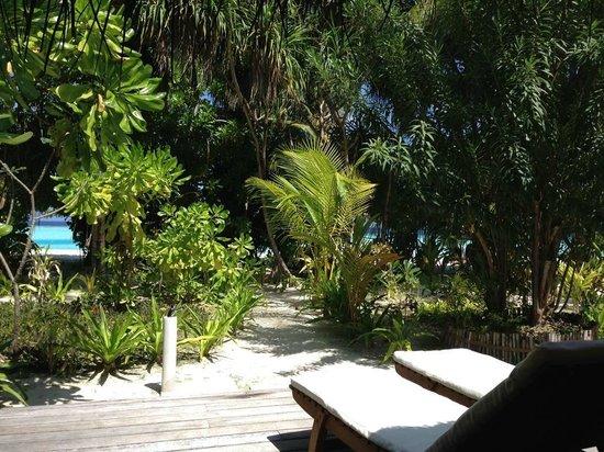 Maafushivaru: Vue de la terrasse