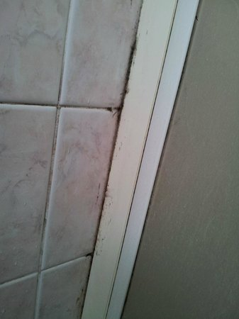 Hotel Excelsior: Mold in the shower cabin