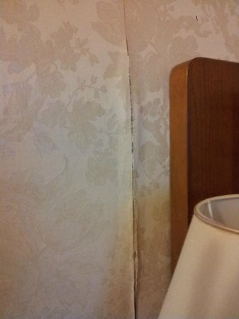 Hotel Excelsior : Wall coming through the wallpaper . . . . .