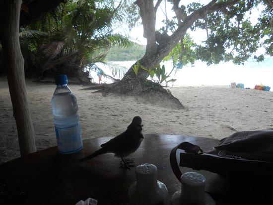 Bonbon Plume: Restaurant outdoor 2