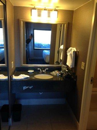 Hyatt Regency Dulles : Clean bathroom