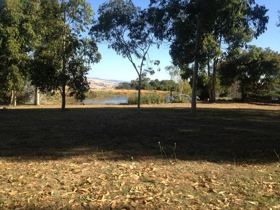 Wombat Hills Cottages: View from Snowgum Cottage towards the lake,