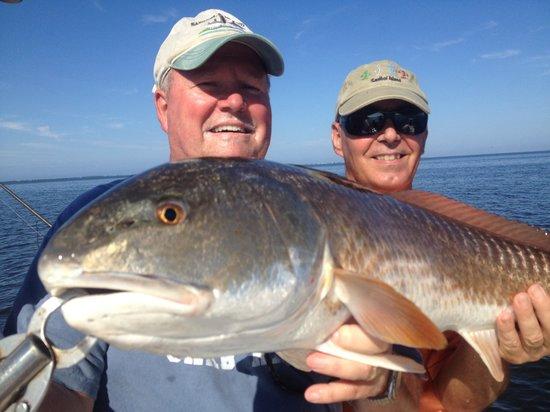 Tarpoons Private Charters : Sanibel island redfish