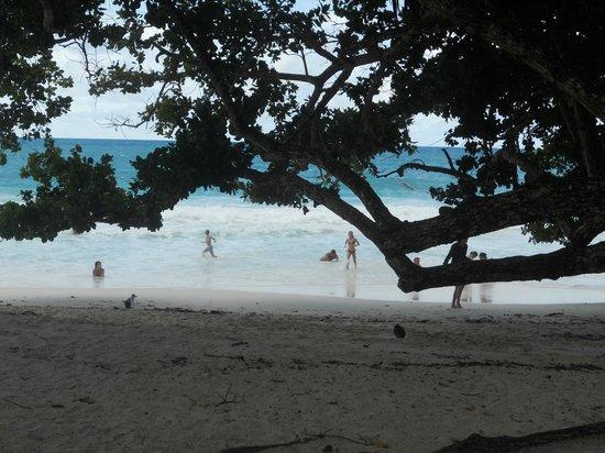 Anse Lazio : beach 3