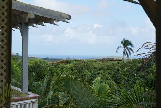 Kauai Banyan Inn: Die Aussicht von der Veranda