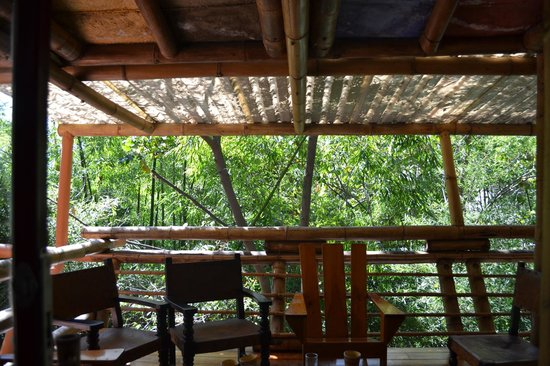 Hotel Reserva Natural Atitlan: View of the balcony from my room