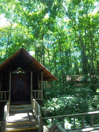 Evergreen Lodge: Exterior de la habitación