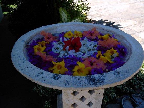 Chalets Cote Mer : Blumenschmuck an der Rezetion