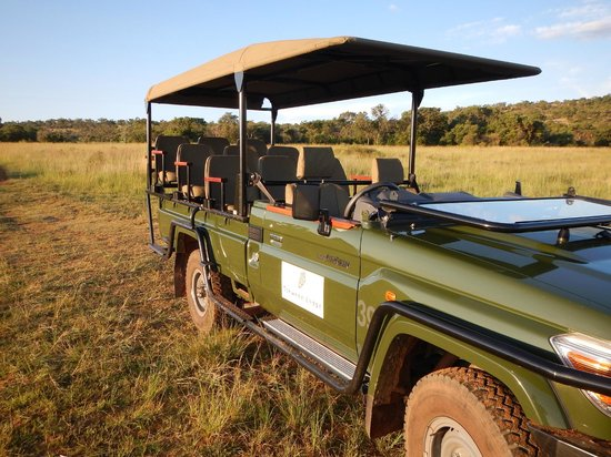 Tshwene Lodge: Safari