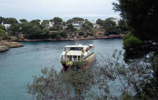 Hotel Cala Ferrera : The Glass Bottomed Boat