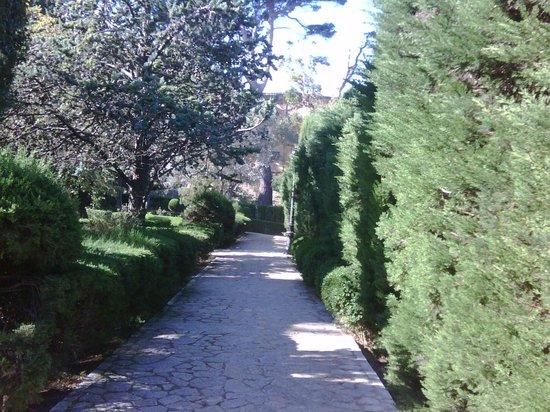 Gran Melia Victoria: Village near by