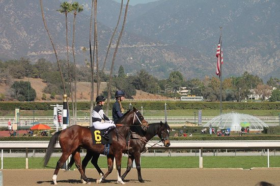 Santa Anita Race Park: A working day