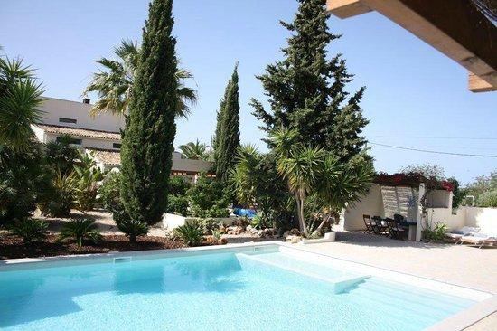 Casa Porta Azul: pool
