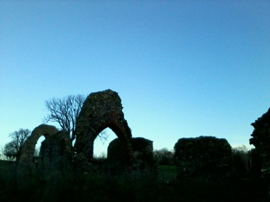 Surlingham, UK : Ruins