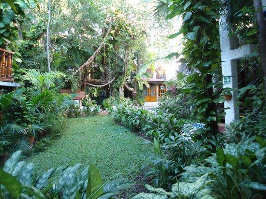 Eco-Hotel El Rey Del Caribe : Gardens