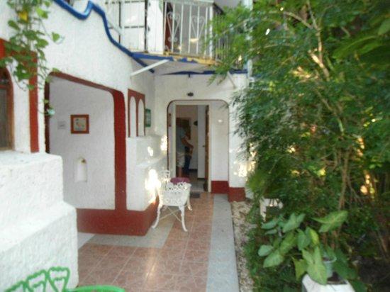 Eco-Hotel El Rey Del Caribe: View of our room